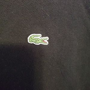 Lacoste Shirts - Lacoste polo